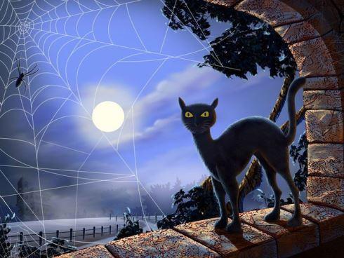 Интересное: Черная кошка