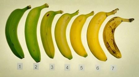 Интересное: Про бананы