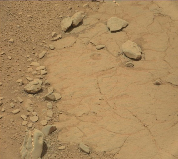 Интересное: На Марсе нашли динозавра