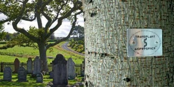 Интересное: Необычные похороны
