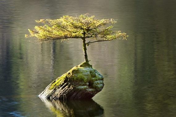 Природа: Красивые фото