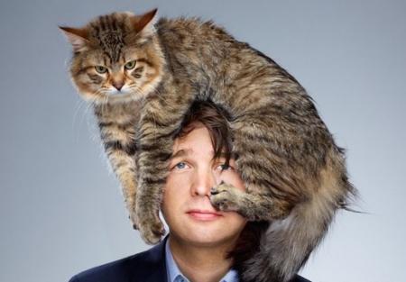 Животные: Как лечат кошки