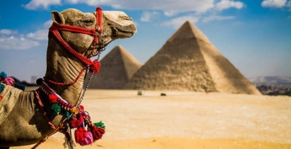 Путешествия: Обман туристов