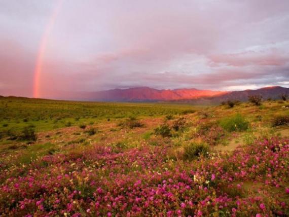 Природа: Красота природы