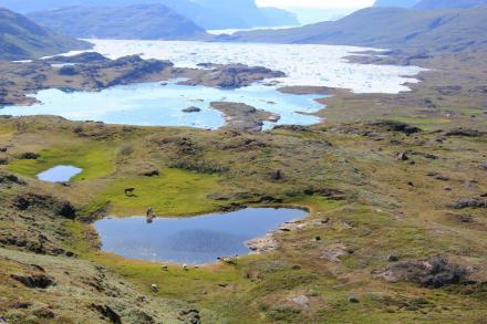 История: Викинги в Гренландии