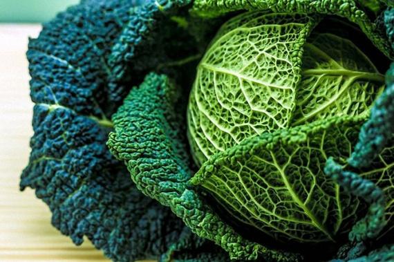 Здоровье: Удаляем токсины