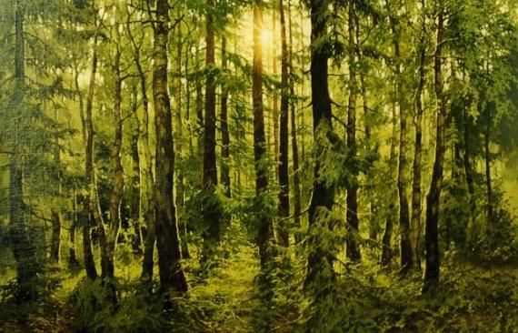 Картинки: Природа.