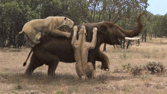 Животные: Вымерли, и хорошо:-)