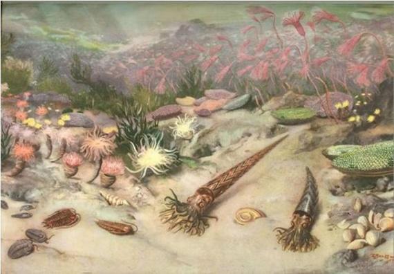 История: Вымирание животных