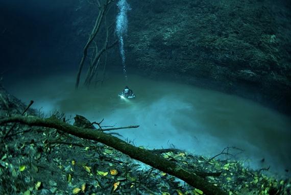 Интересное: Подводный мир