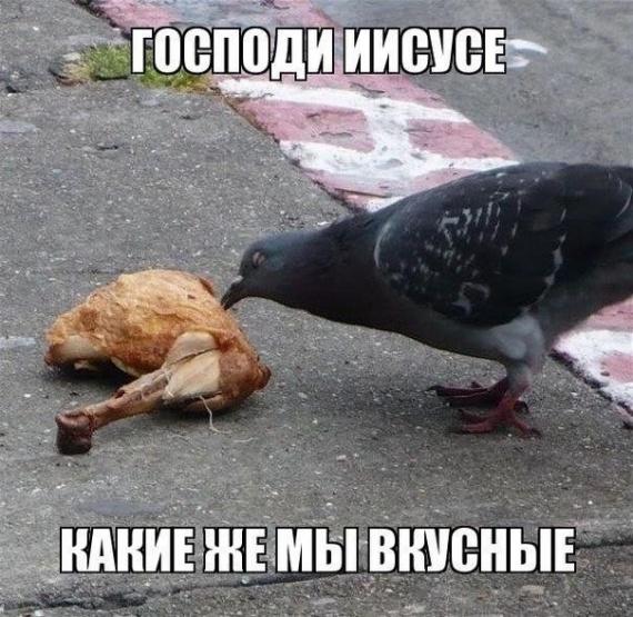 Картинки: Точно:-)
