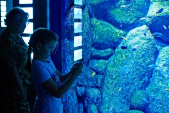 Интересное: Океанариум в Москве