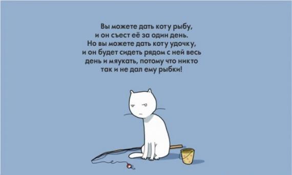 Животные: Кошки