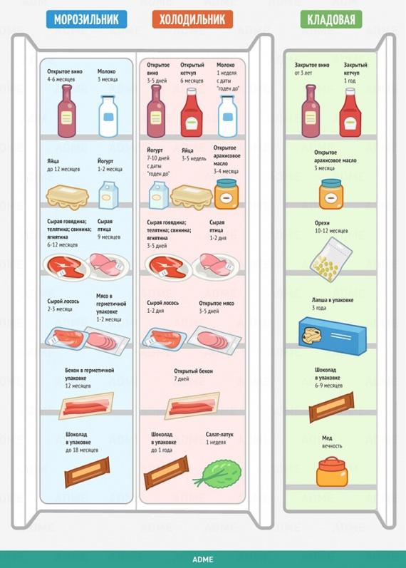 кухня: Сколько живет еда?