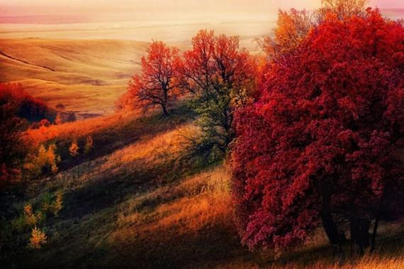 Природа: Очей очарованье