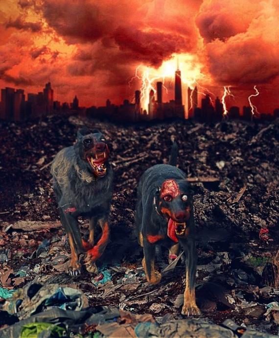 Картинки: Животные-зомби