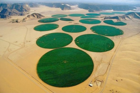 Интересное: Ожививший пустыню
