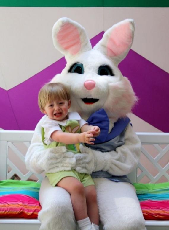 Юмор: Милые кролики