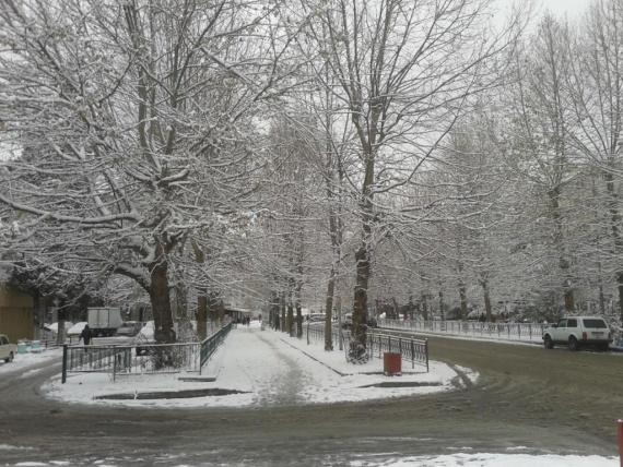 Блог djamix: В Адлере зима:-)