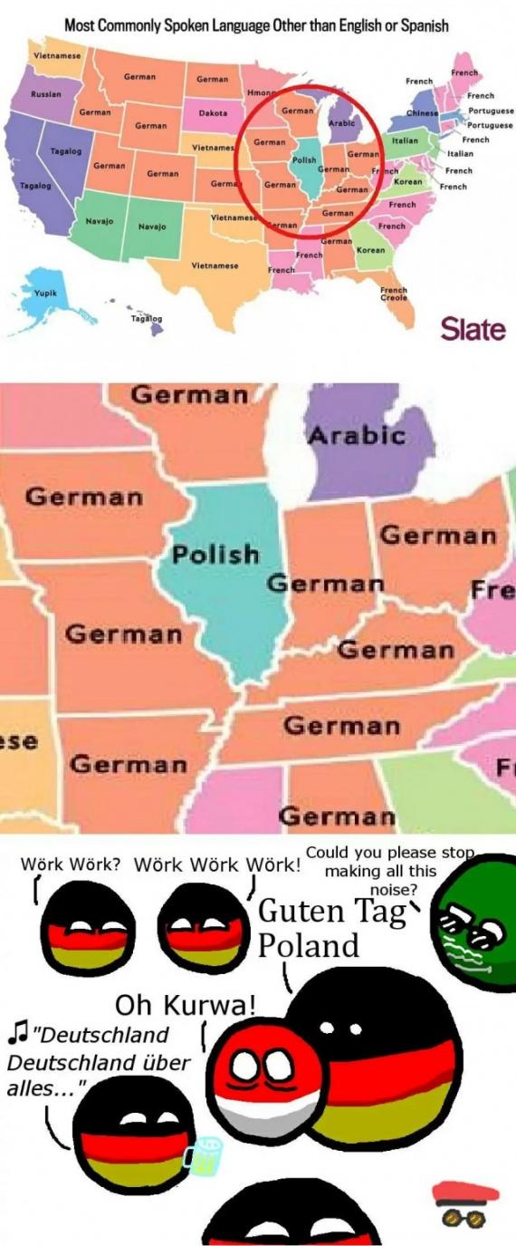 Интересное: Наиболее используемые языки (кроме английского и испанского) в США