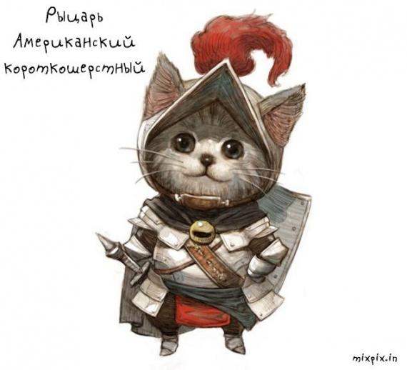 Картинки: Кошачья армия