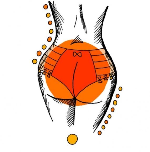 Интересное: Типы женских попок