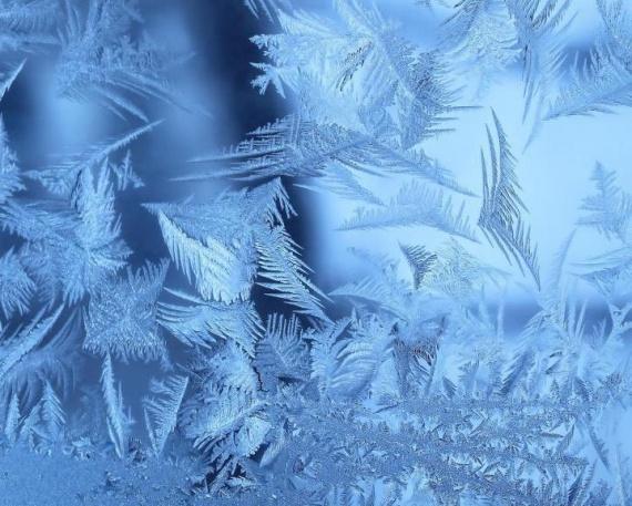Природа: Июньские заморозки в России