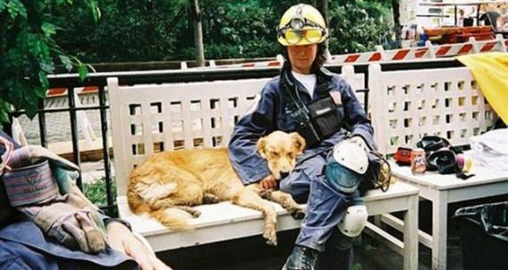 Животные: Прощай, настоящий друг
