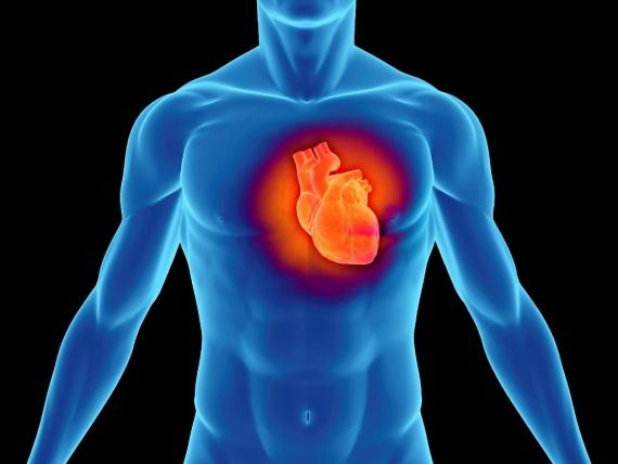 Здоровье: Инфаркт и инсульт - в чем разница?