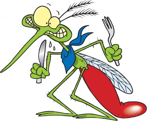 Полезные советы: Как избавиться от комаров