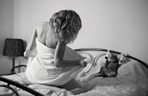 Картинки: Хорошо быть кошкой, хорошо собакой...