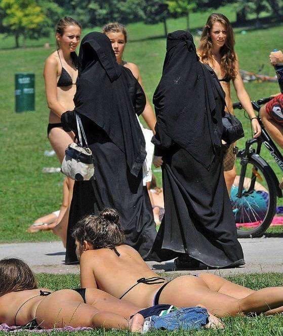 Общество: Меркель говорит, что сможет объединить эти две культуры...