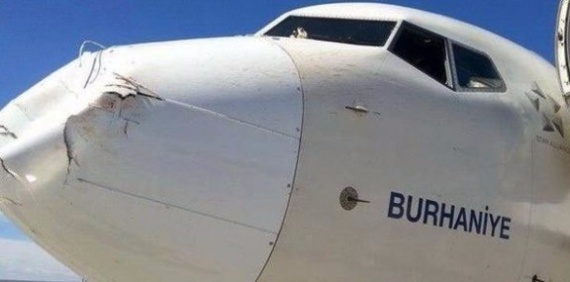 Проишествия: Самолет после столкновения с птицами