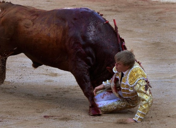 Животные: Нападения животные на людей