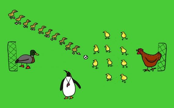 Интересное: Почему утята ходят за мамой гуськом, а цыплята стайкой?