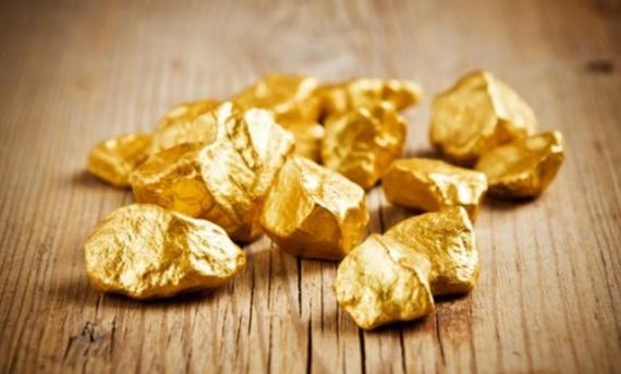 Криминал: Житель Приамурья нашел в лесу банку с килограммом золота