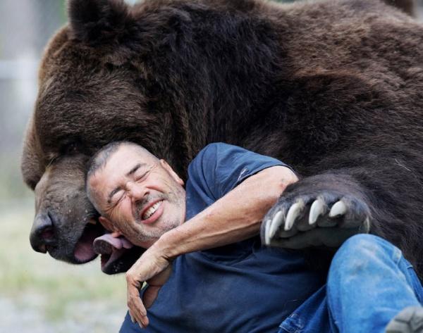 Животные: Большой друг