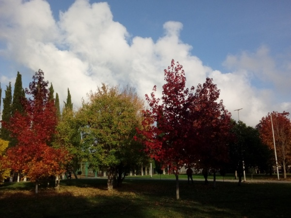 Осенний Адлер