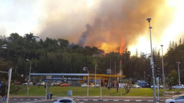 Происшествия: Израиль горит