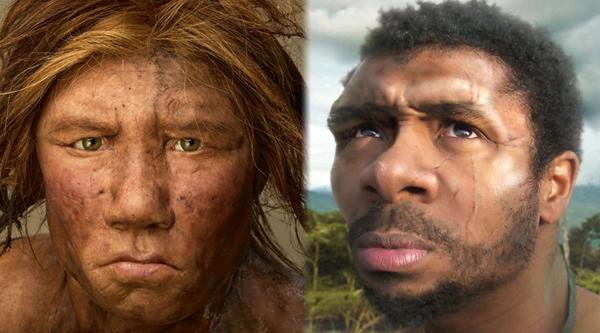 Жизнь: Почему вымерли неандертальцы