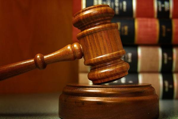 Право и закон: За издевательства над животными тюрьма от двух до семи лет