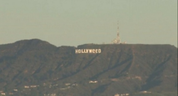Происшествия: Hollywood превратился в Hollyweed