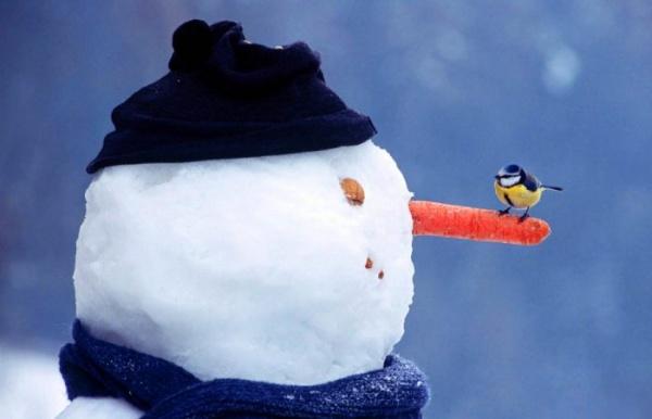 Интересное: История снеговика