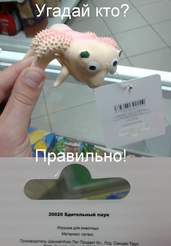 Интересное: Безумные игрушки