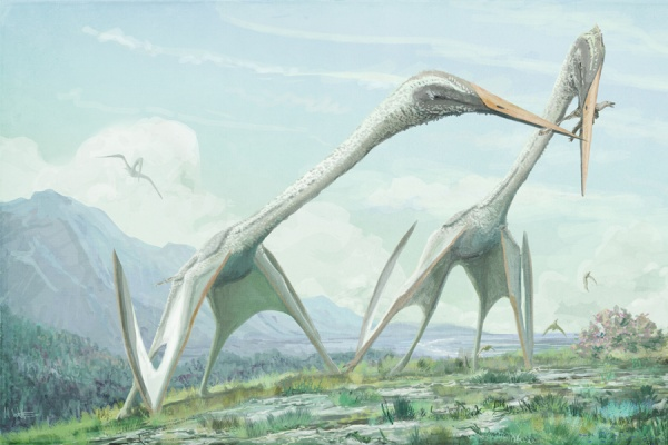 Интересное: Ужас на крыльях