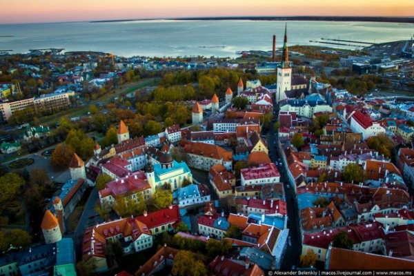Путешествия: Таллинн с высоты