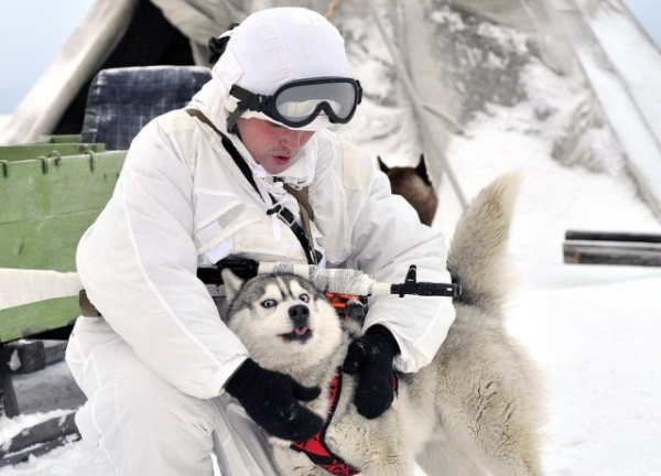 Общество: Арктическая бригада Северного Флота
