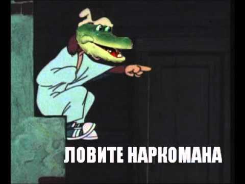 Безумный мир: Ющенко -Украина 24 раза воевала с Россией