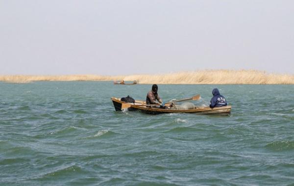 Природа: Аральское море спасают