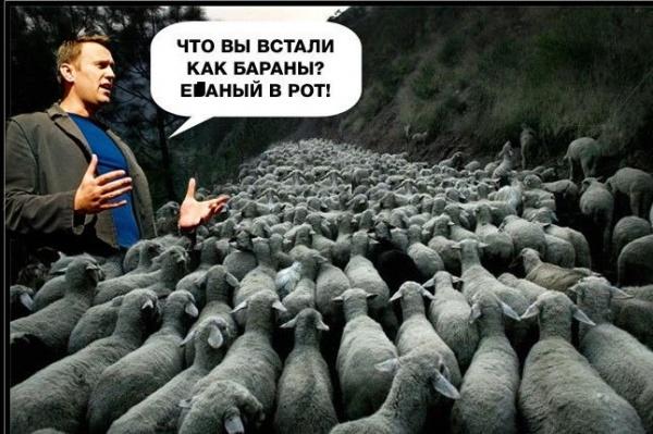 Общество: То, что сделал Навальный - подстава и свинство